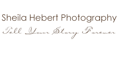 Sheila Hebert Photography logo